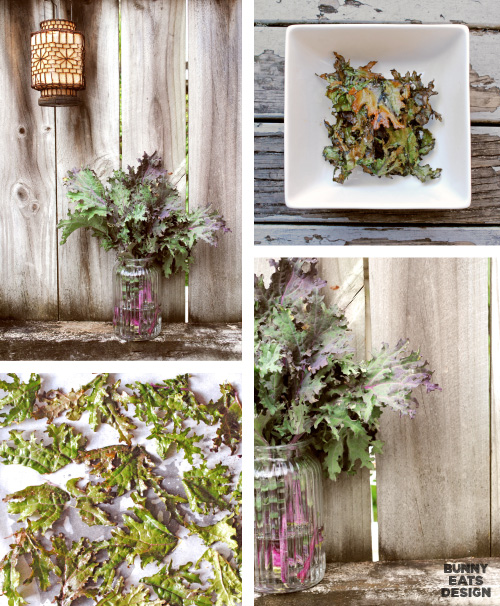 Red russian kale and kale chips