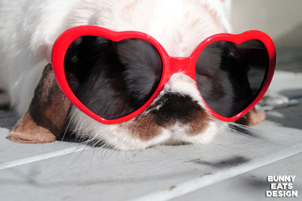 tofu-heart-sunglasses-web