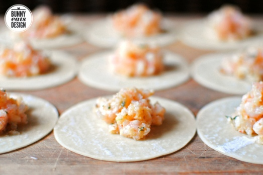 dumpling-wrapper-ravioli5