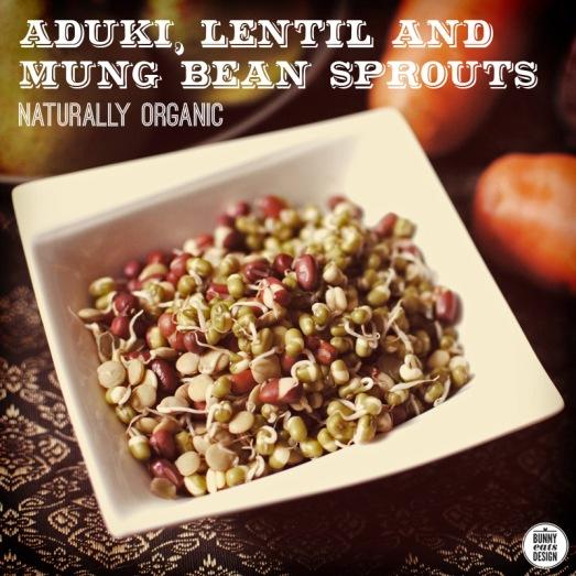 naturally-organic-02