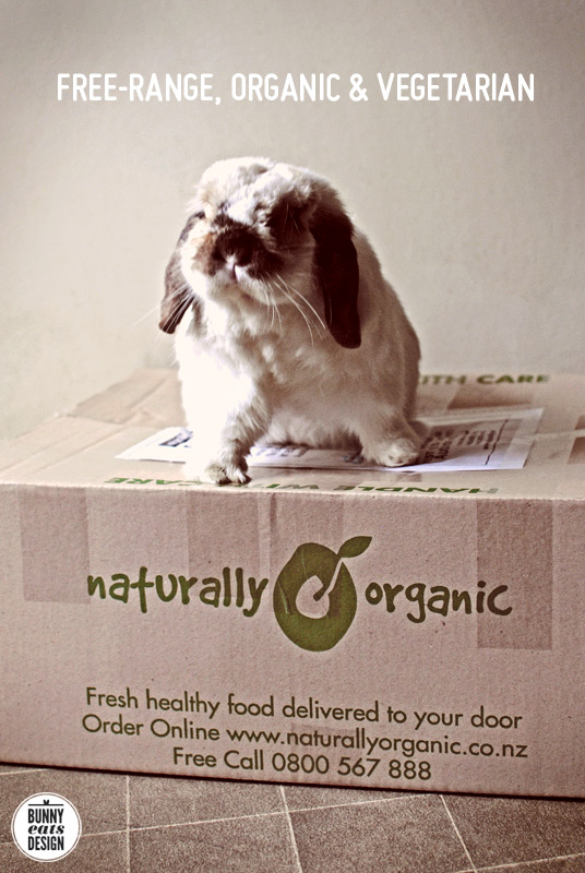 tofu-naturally-organic