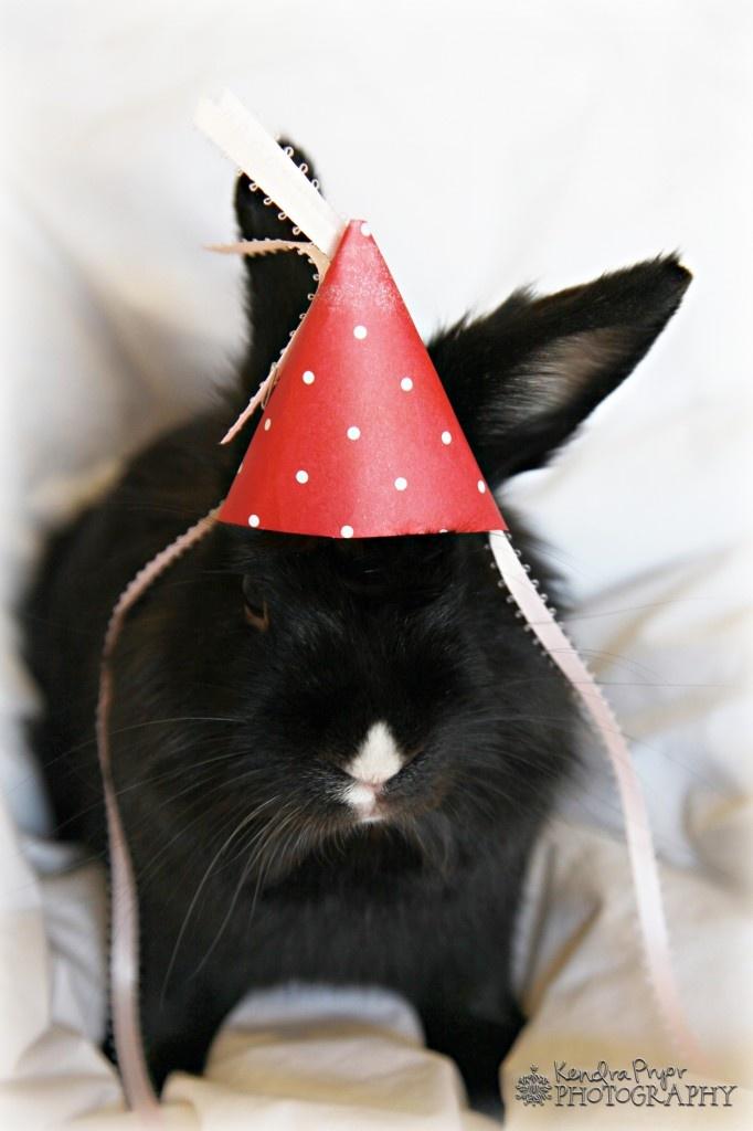 monday bunday  birthday buns