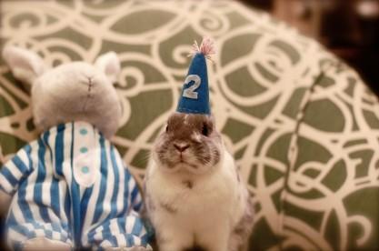 birthday-buns09