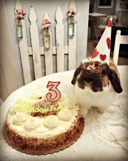 birthday-buns14