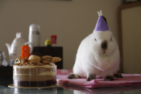 birthday-buns22