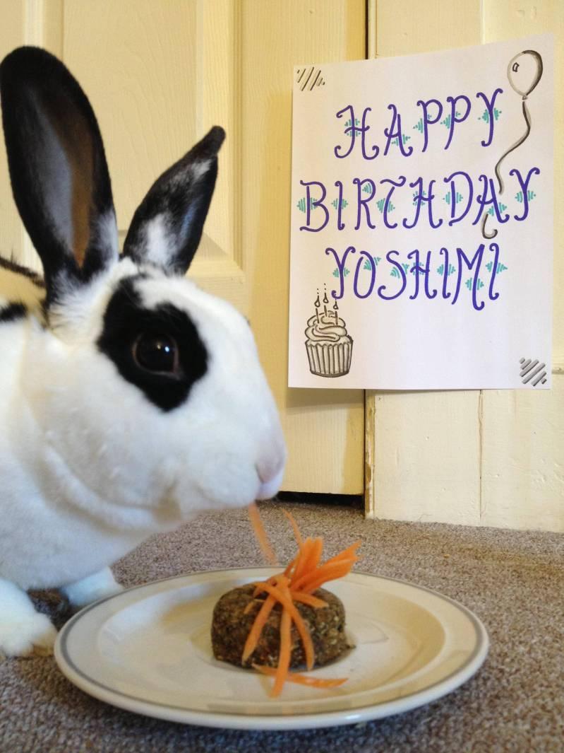birthday-buns28