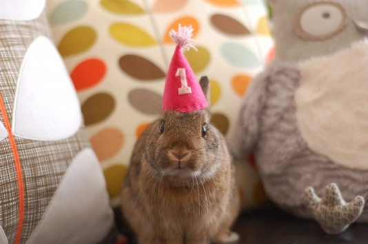 birthday-buns30