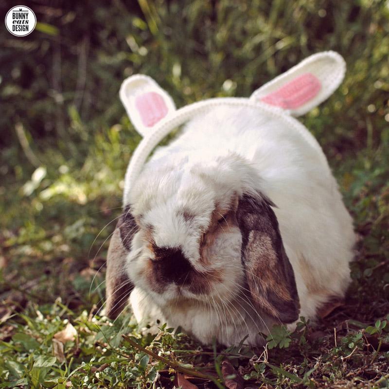 tofu-bunny-headphones1