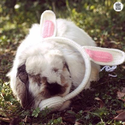 tofu-bunny-headphones2