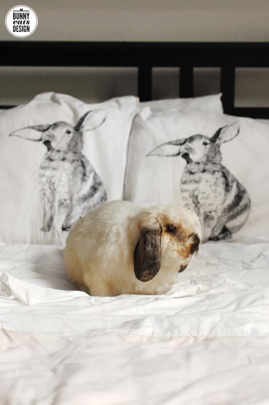 tofu-pillowcases-1