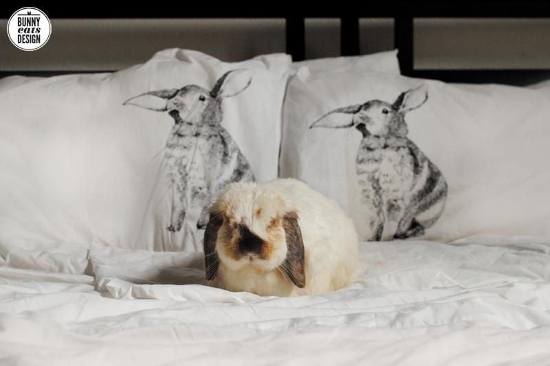 tofu-pillowcases-2