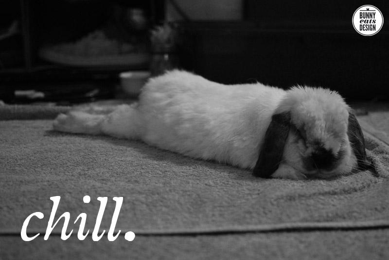 Afbeeldingsresultaat voor relax rabbit