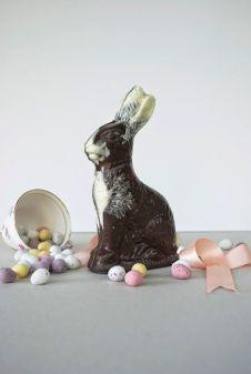 chocolate-easter-bunnies0