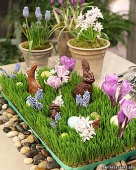 chocolate-easter-bunnies4