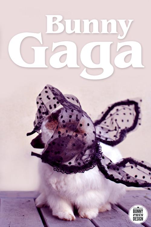 bunny-gaga2