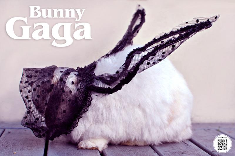 bunny-gaga3