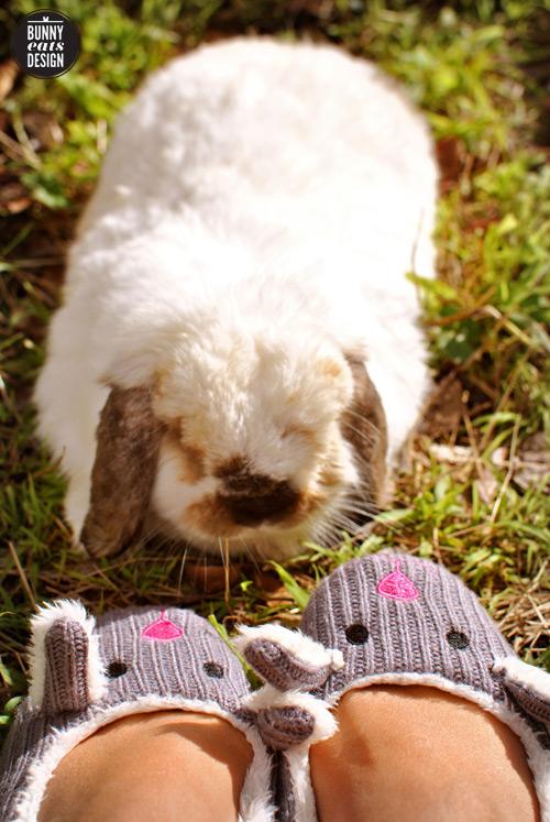 tofu-bunny-slippers1