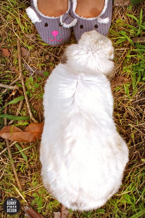 tofu-bunny-slippers2