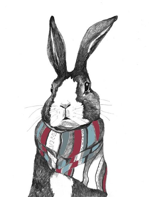 Rabbits Love Scarfs by Donna McKenzie