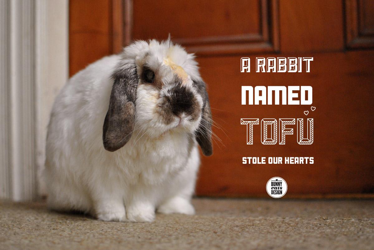 tofu-july-door1