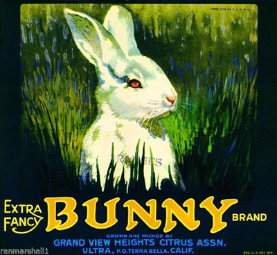 Frostproof Florida Red Rabbit Bunny Orange Citrus Fruit Crate Label Art Print