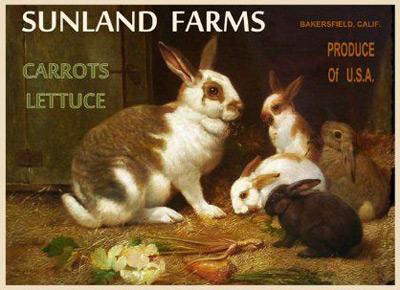 bunny-vintage-14