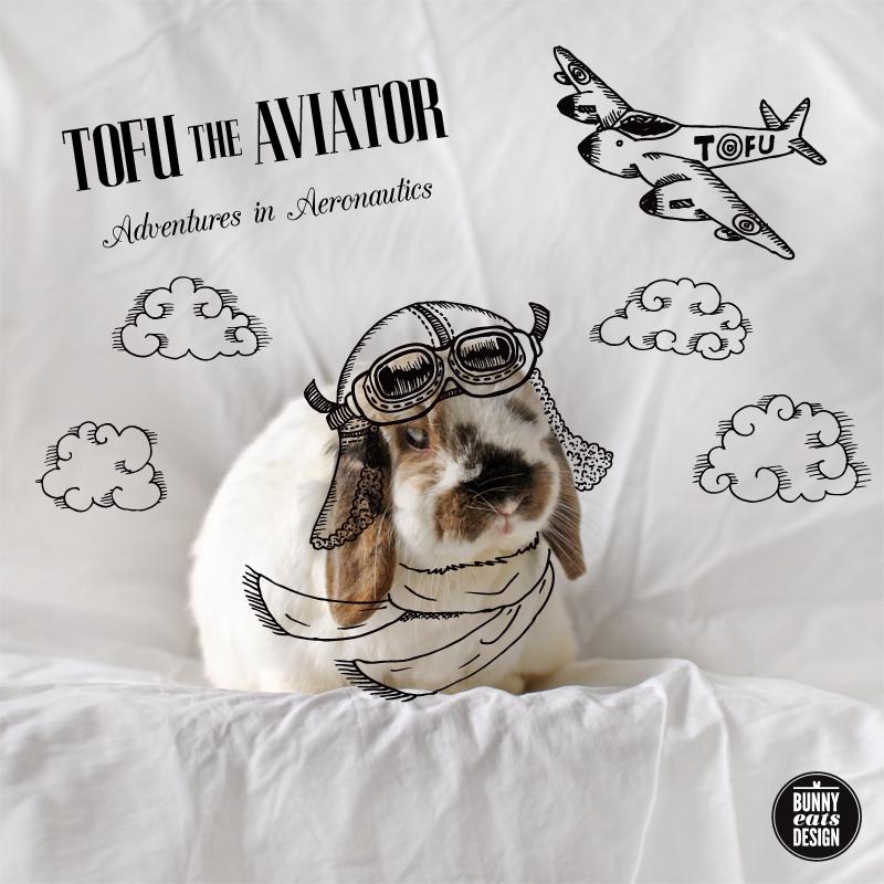 tofu-aviator