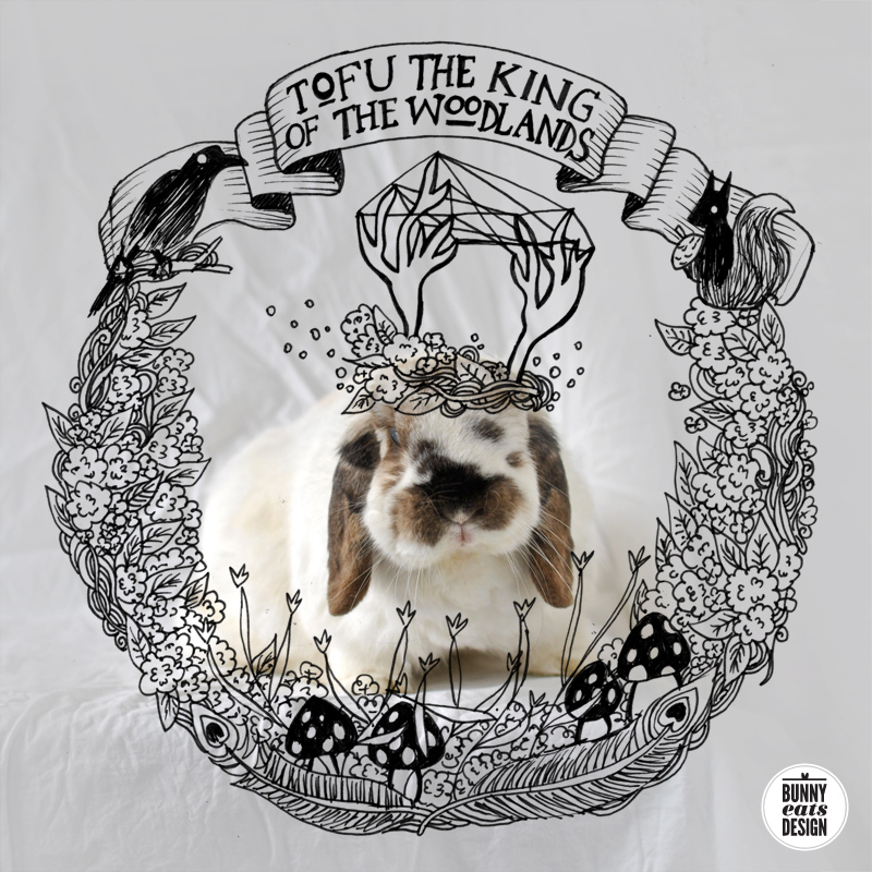 TOFU-KING-OF-THE-WOODLANDS