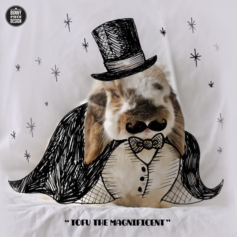 tofu-magician