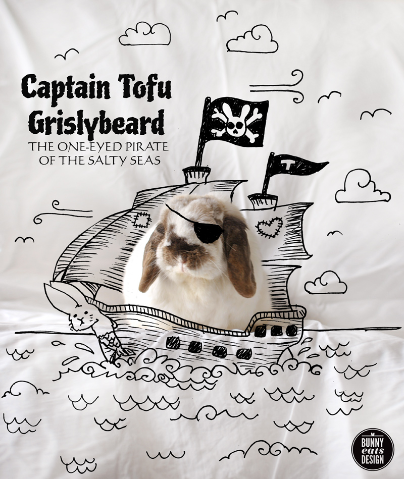 tofu-pirate-ship