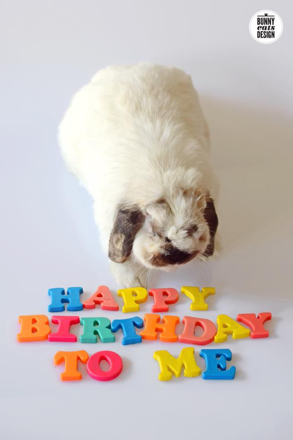 tofu-happy-birthday1