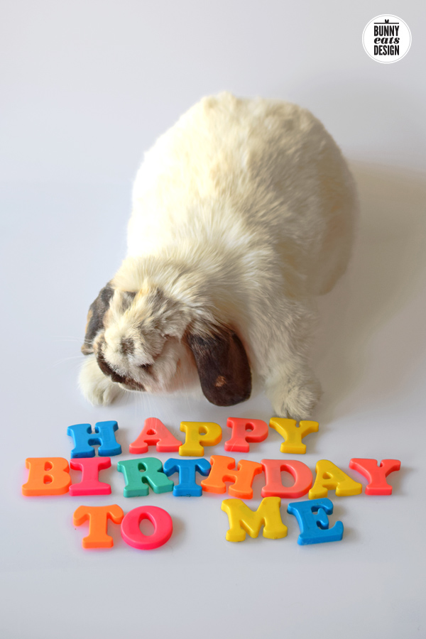 tofu-happy-birthday2