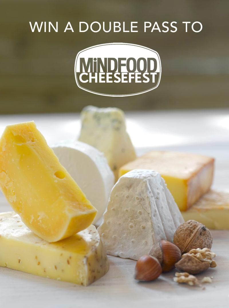 cheesefest2