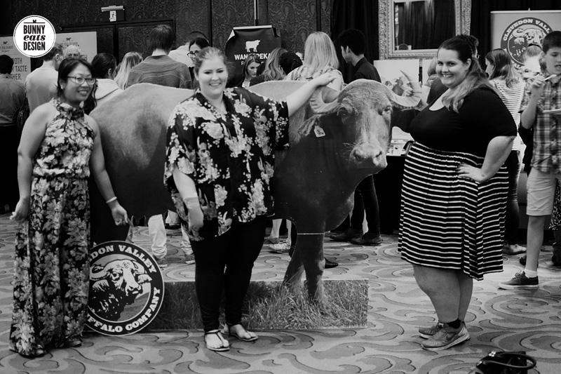 cheesefest2015-029