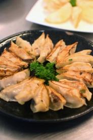 contiki-sachie-dumplings50