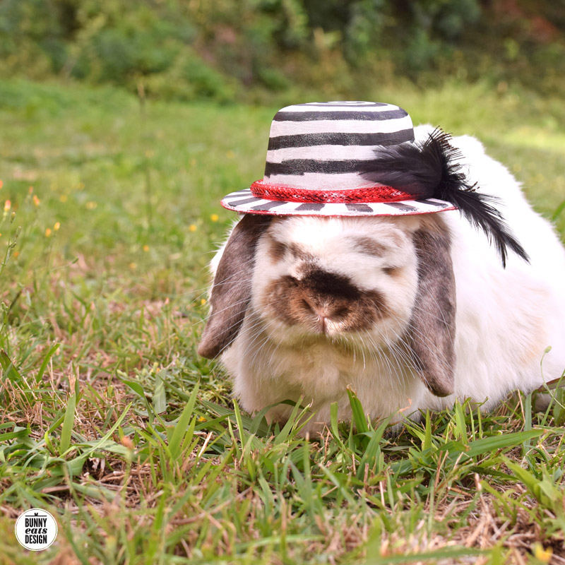 tofu-mime-hat1