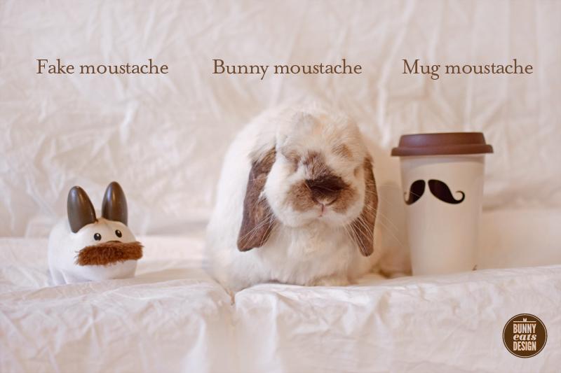 tofu-moustache-009