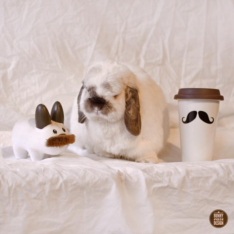 tofu-moustache-031