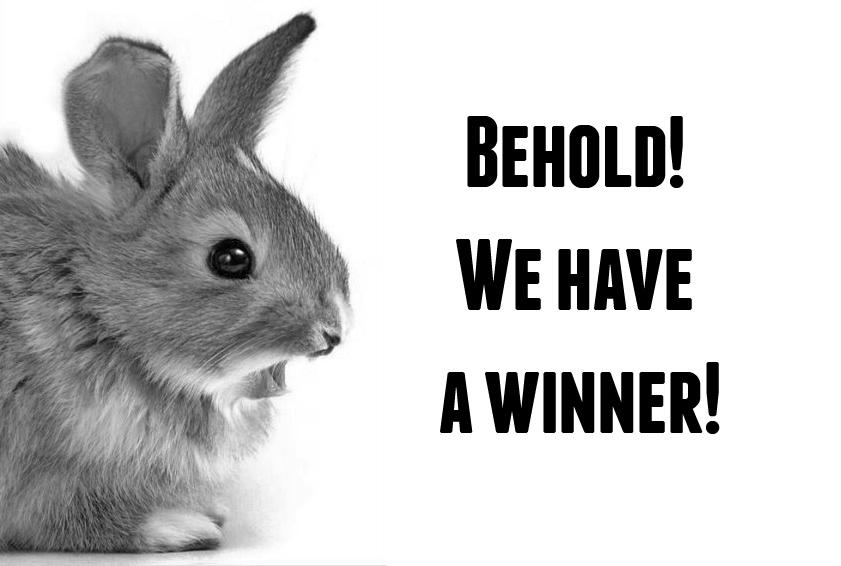 behold-winner