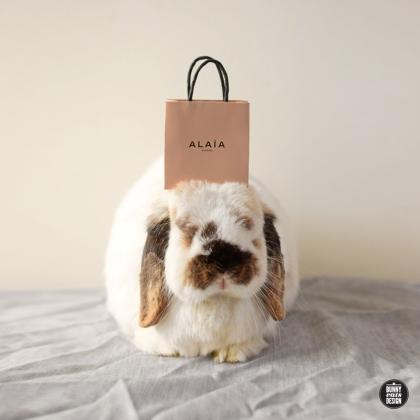tofu-gift-bag