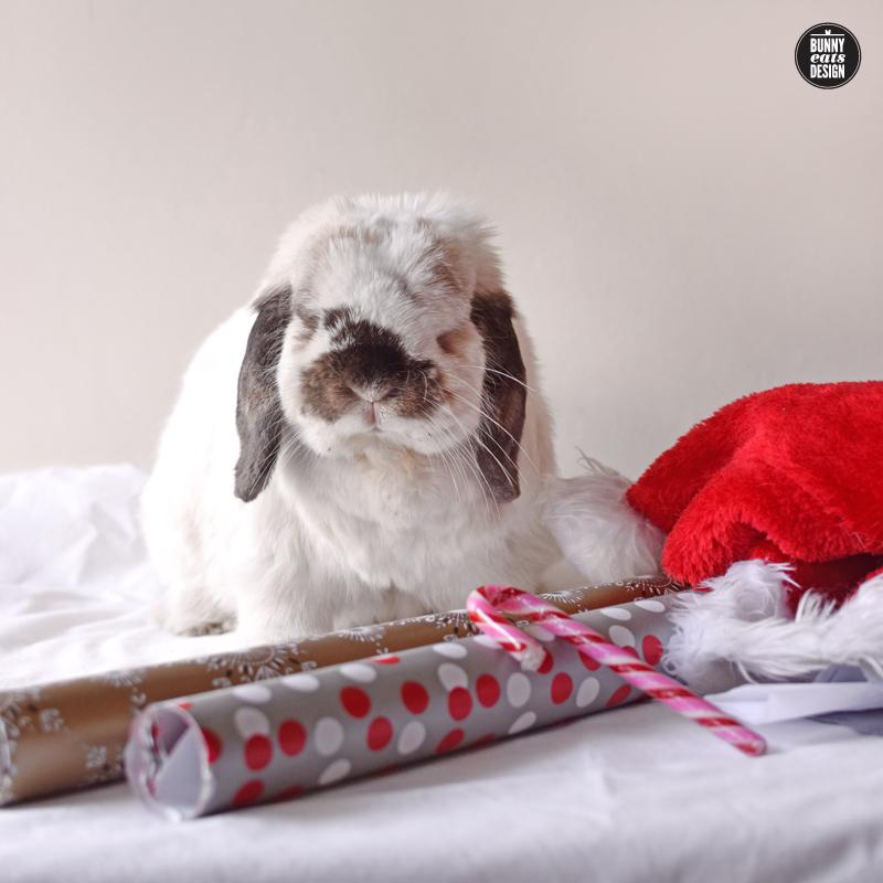 tofu-christmas-gift-wrapping-032