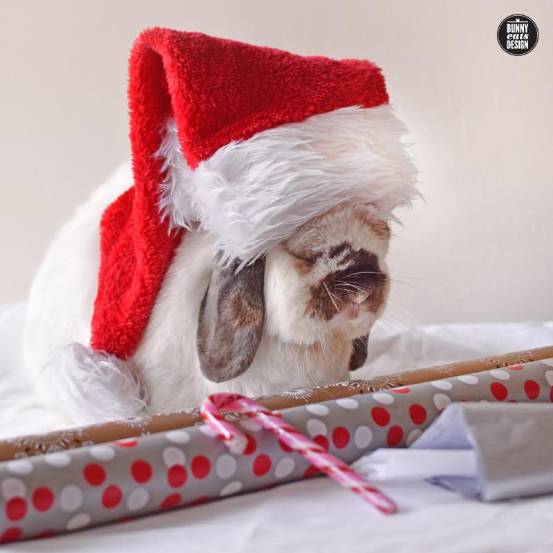 tofu-christmas-gift-wrapping-047