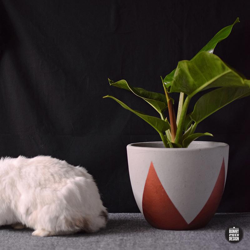 tofu-philippe-006