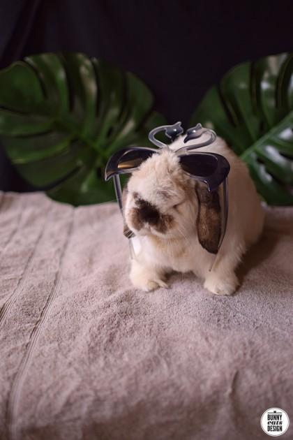 tofu-swan-sun-glasses-018
