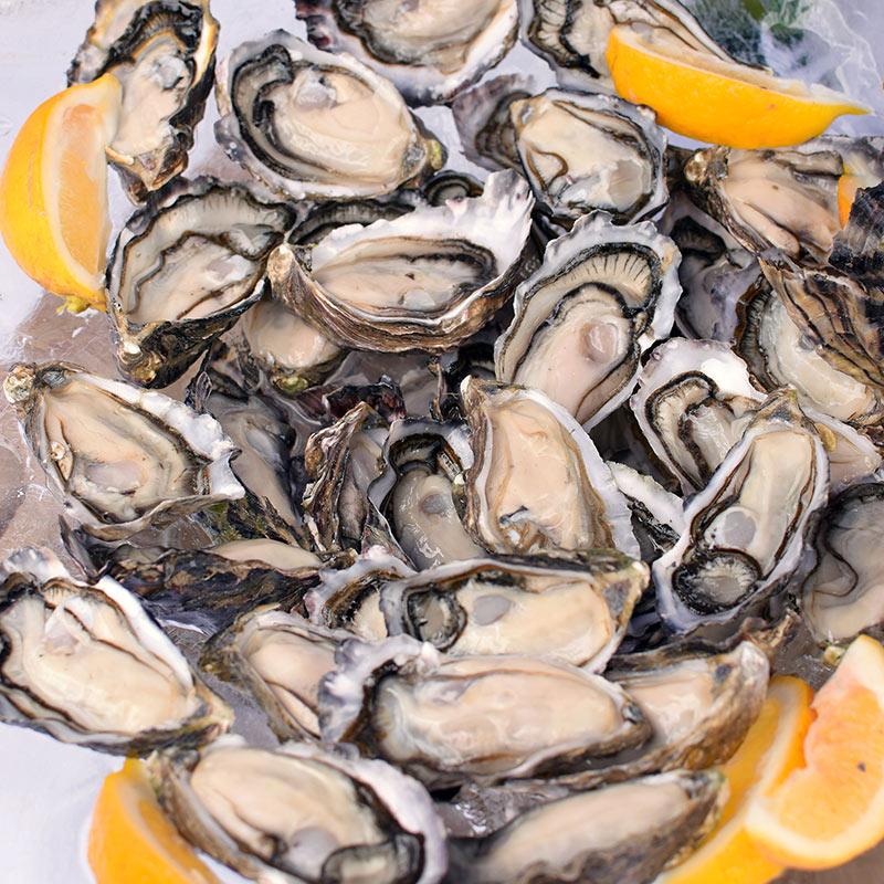 tematuku-oyster-fest-075