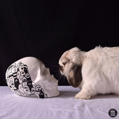 tofu-cracked-ink-skull-008