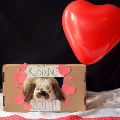 tofu-kissing-booth-003