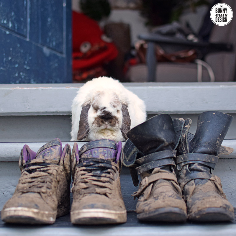 tofu-muddy-boots-006